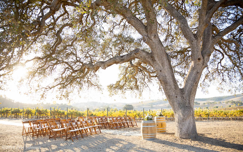 cass winery ceremony