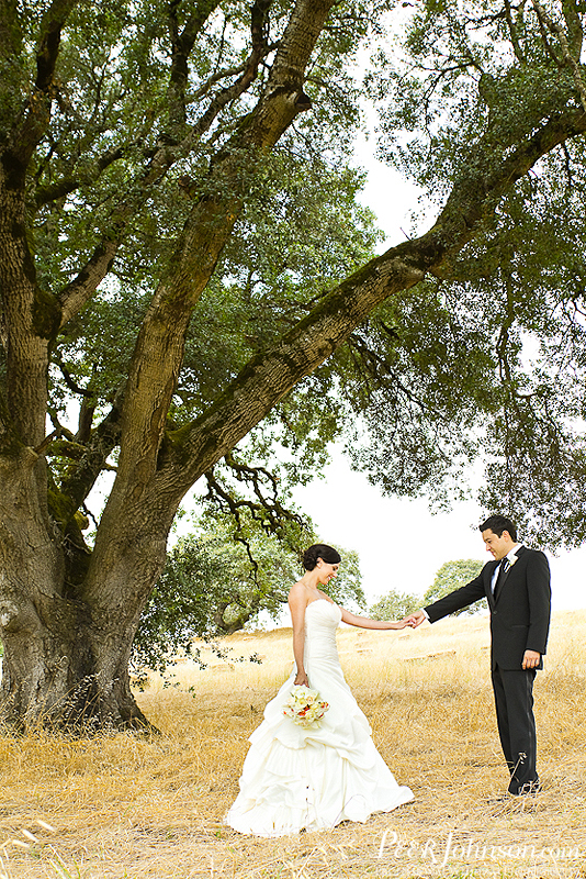 wedding photographer 107 Wine Country Wedding in Sonoma!