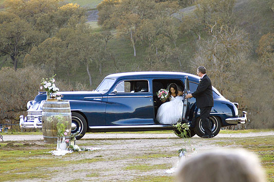 Cass Winery Limo