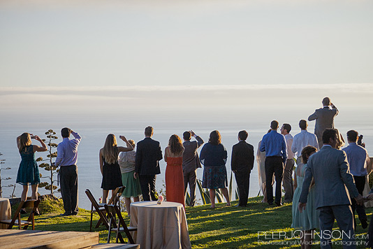 Big Sur Wedding Reception3