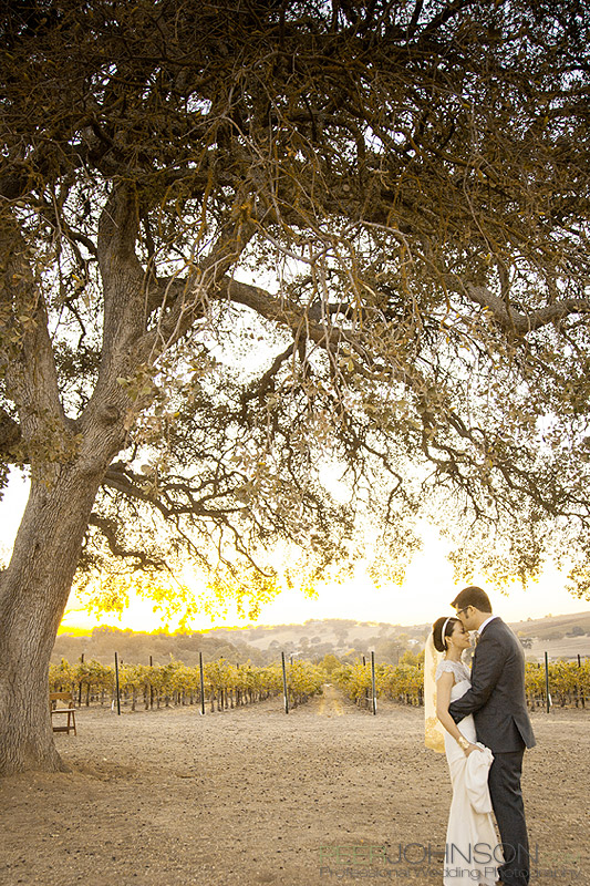 WeddingCassWinery Cass Winery Fall Wedding