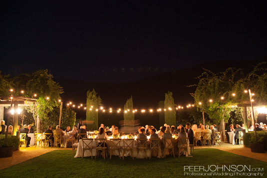 Carme Winery Summer Wedding Reception