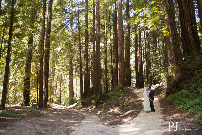 glen oaks elopement