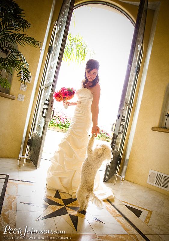 PeerJohnson Santa Barbara Wedding 221