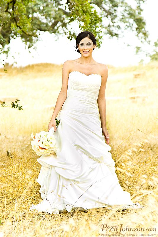 wedding photographer 105