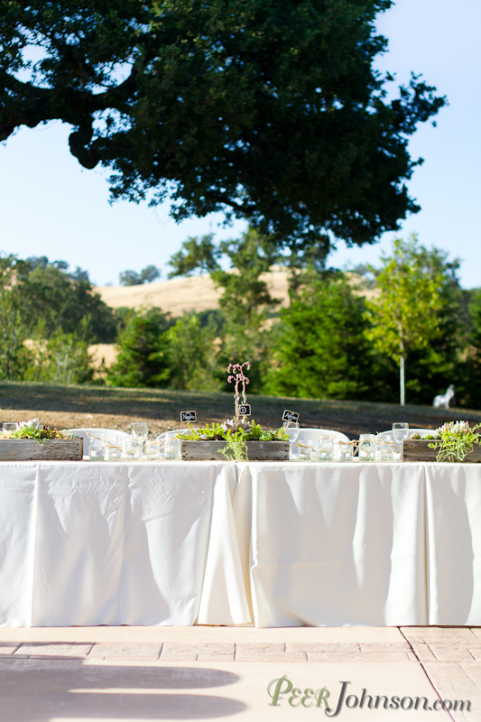 spanish oaks wedding21