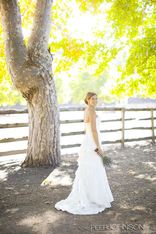 Wedding Thacher Winery