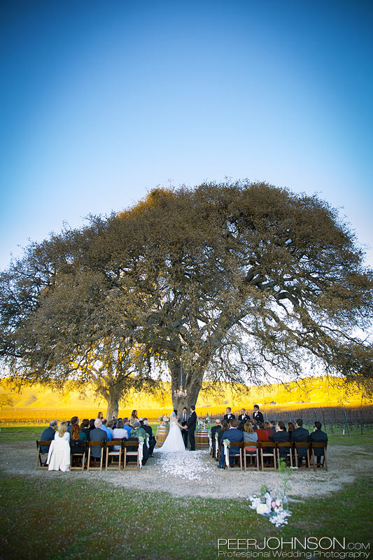 Wedding Ceremony at Cass Winery
