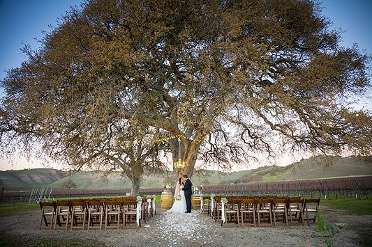 Wedding Ceremony Cass Winery