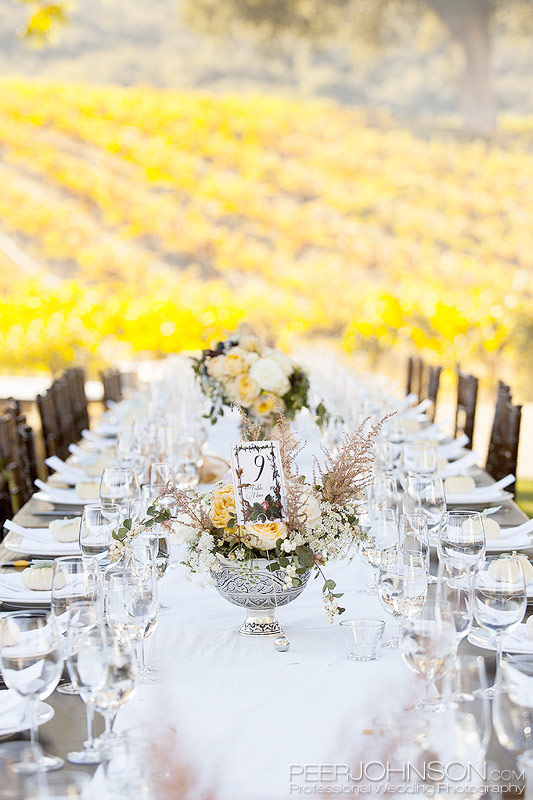 Wedding Reception HammerSky