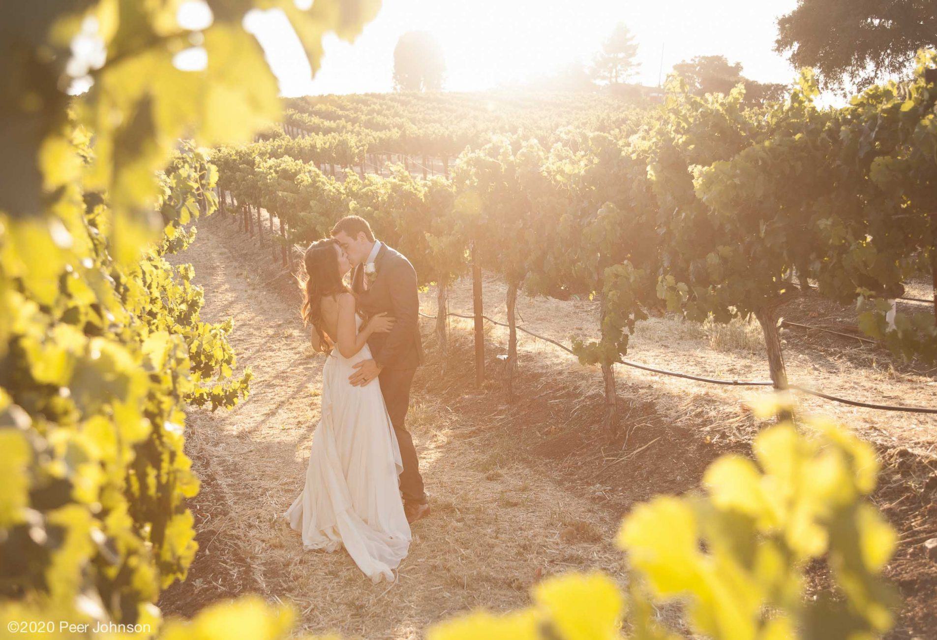 Cambria Sunset Wedding