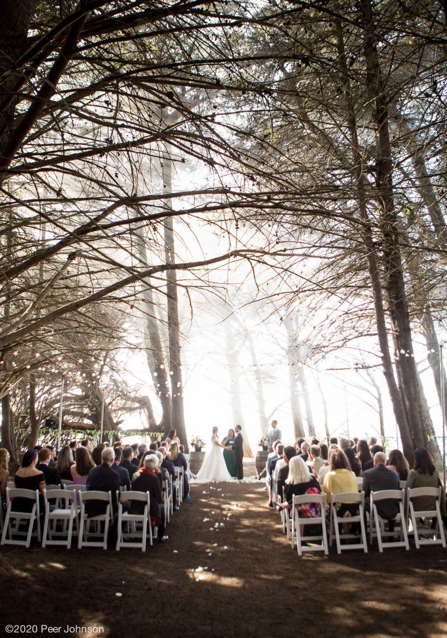 Ragged Point Wedding